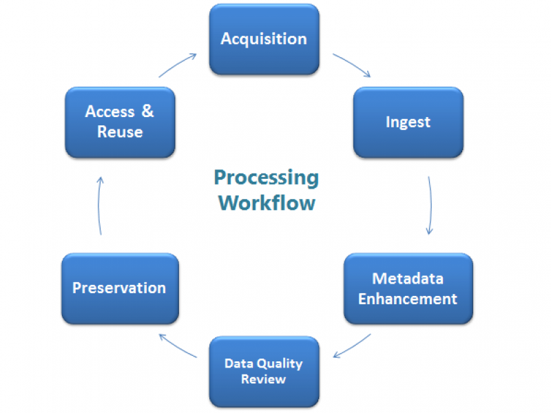 Processing Workflow