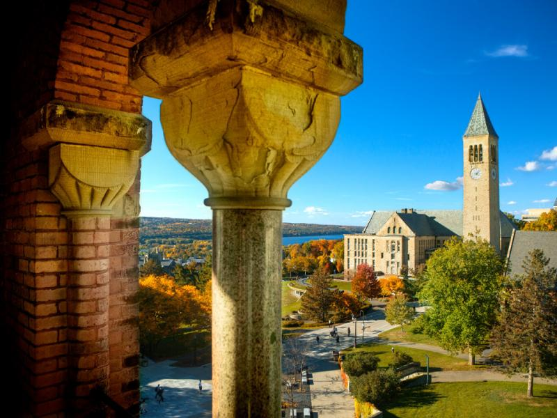 Cornell Landscape and McGraw Tower