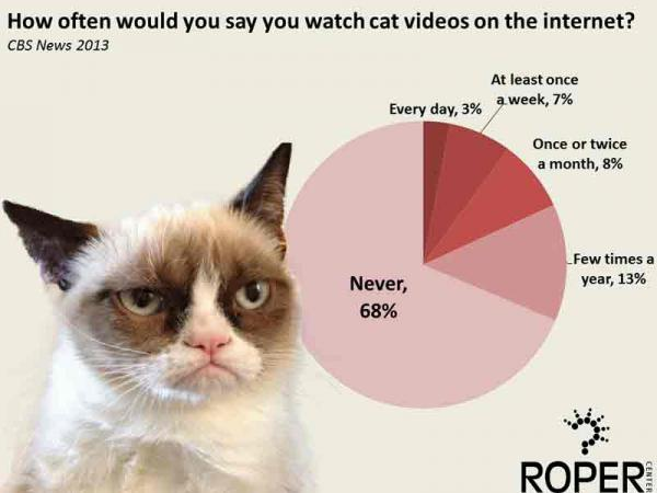 Viewership of online cat videos